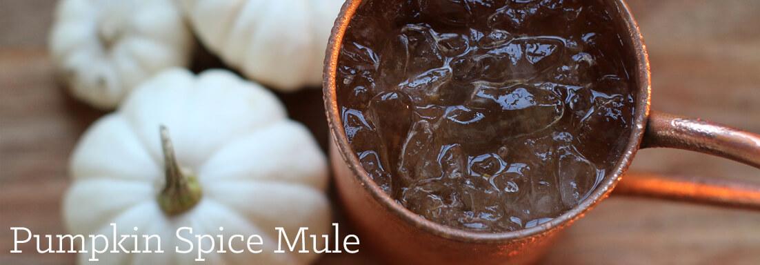 pumpkin-spice-mule-blog